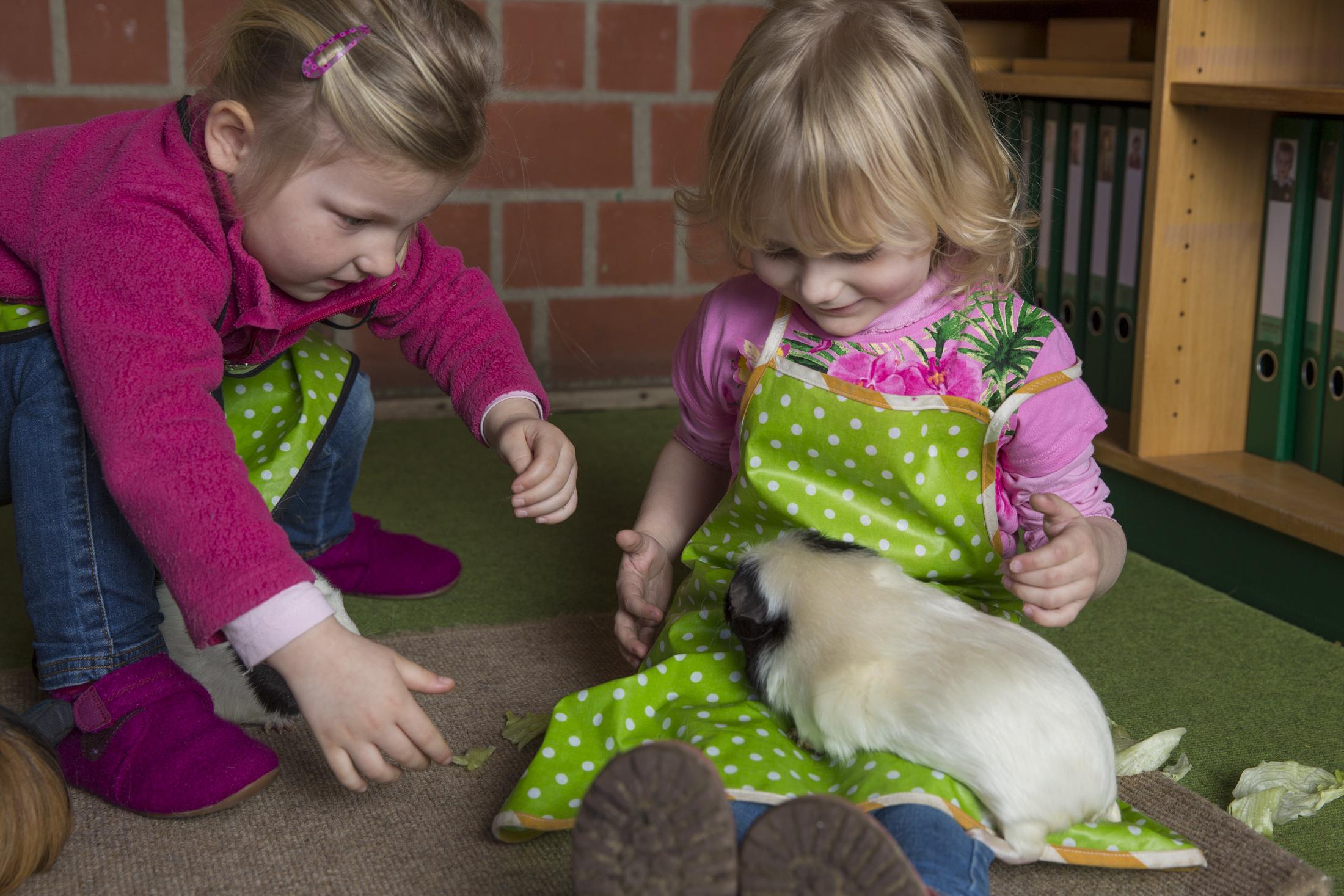 Tiere im Kinderhaus